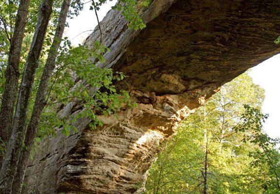State Park - Natural Bridge