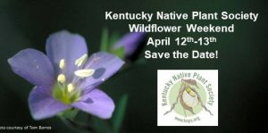 KNPS 2019 Wildflower Weekend @ Red River Gorge | Stanton | Kentucky | United States