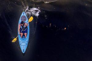 Levisa Fork PaddleFest @ Prestonsburg Tourism   Prestonsburg   Kentucky   United States