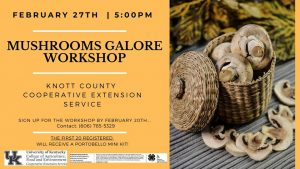 Mushroom Galore Workshop @ Knott County Extension Office | Hindman | Kentucky | United States