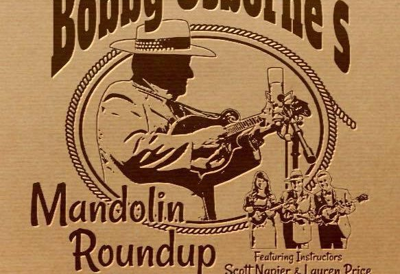 Mandolin Roundup