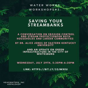 Saving Your Streambanks: A Water Works Workshop with Alice Jones @ Online